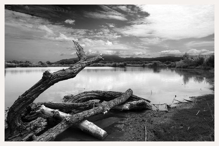 rio grande state park albuquerque - Mark Goebel Photo Gallery