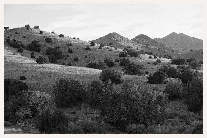 pine hills highway 60 new mexico nm - Mark Goebel Photo Gallery