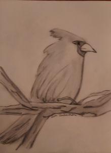 Cardinal pencil