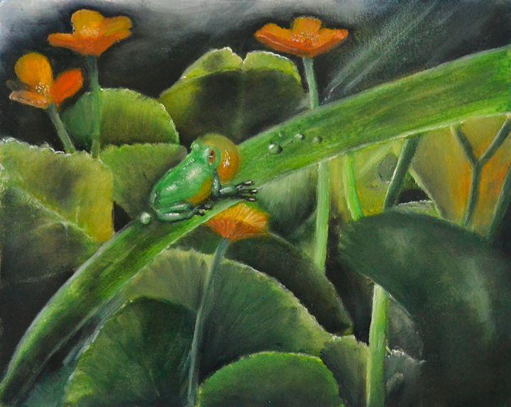 frog - Alejandro D