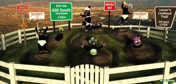 Wack-A-Mole Hill - GalleryGazers