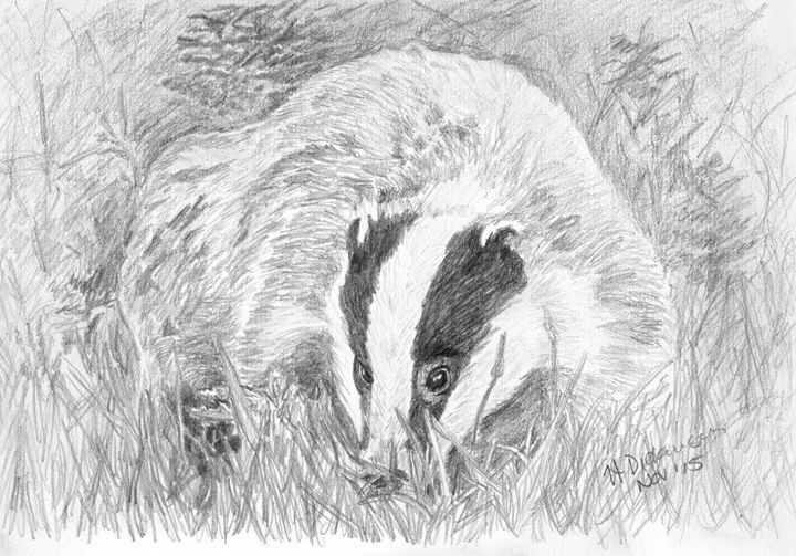 Busy Badger - Down To Earth Artwork
