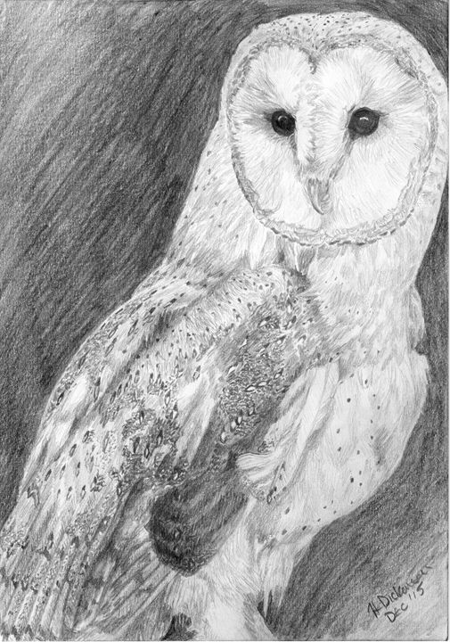 Barn Owl - Down To Earth Artwork