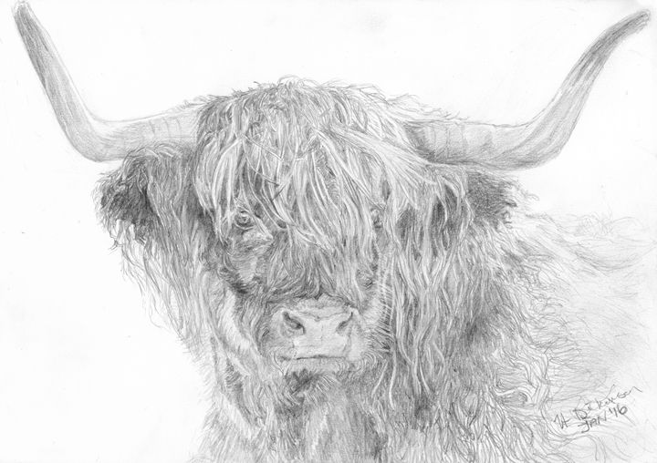 Highland Coo - Down To Earth Artwork
