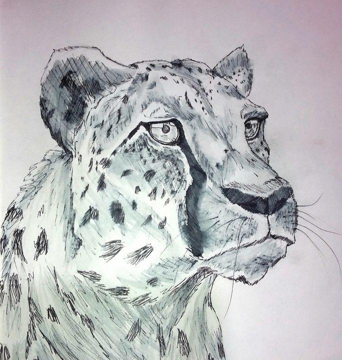 Cheetah - Art