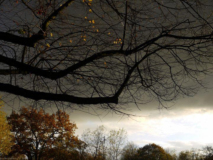 Dark skies - All Men Must Paint