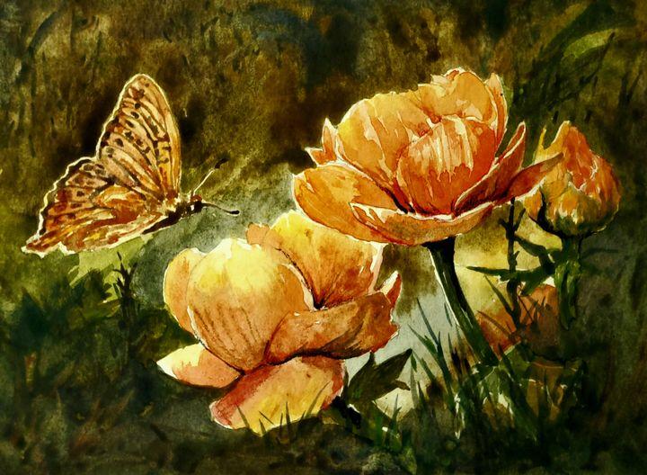 Butterfly - Aweshreem