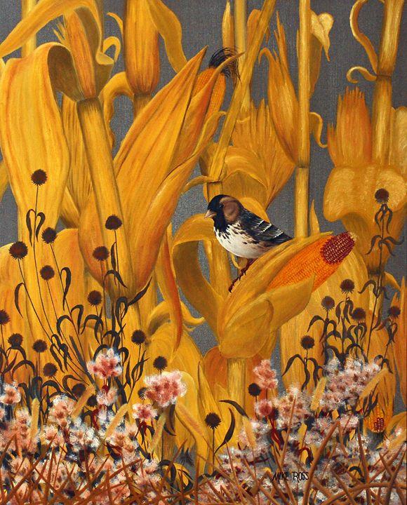 Harris Sparrow - Mike Ross Original Oils