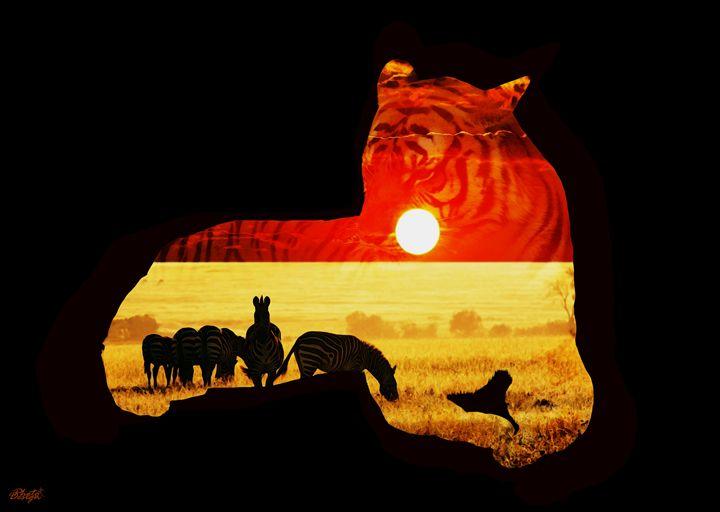 Africa Sunset - Photo Design AJ