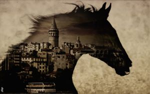Horse of Istanbul