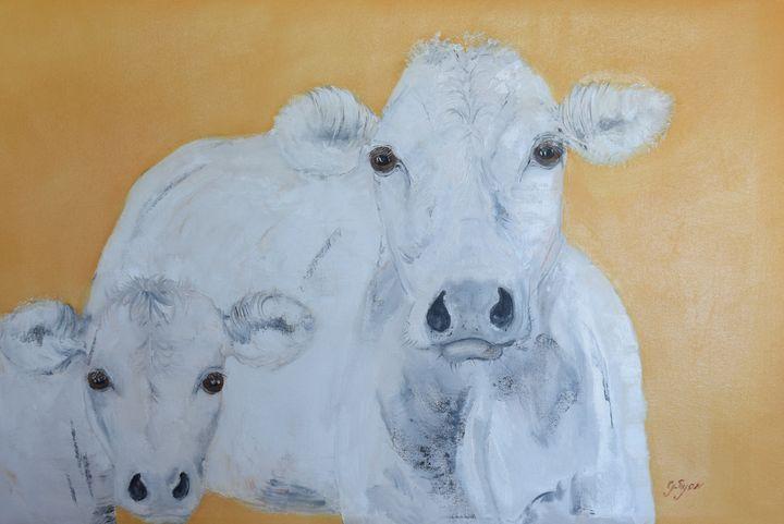 Cowslip and Cowboy - G.Ryan ( Geraldine )