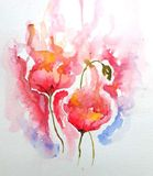 Original Watercolor Painting Poppies