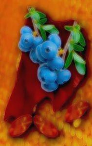 Bomb my blueberries