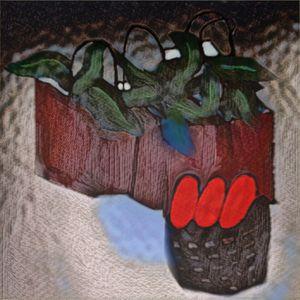 Vegetate onto Mate - Bug up my Donkey Photography