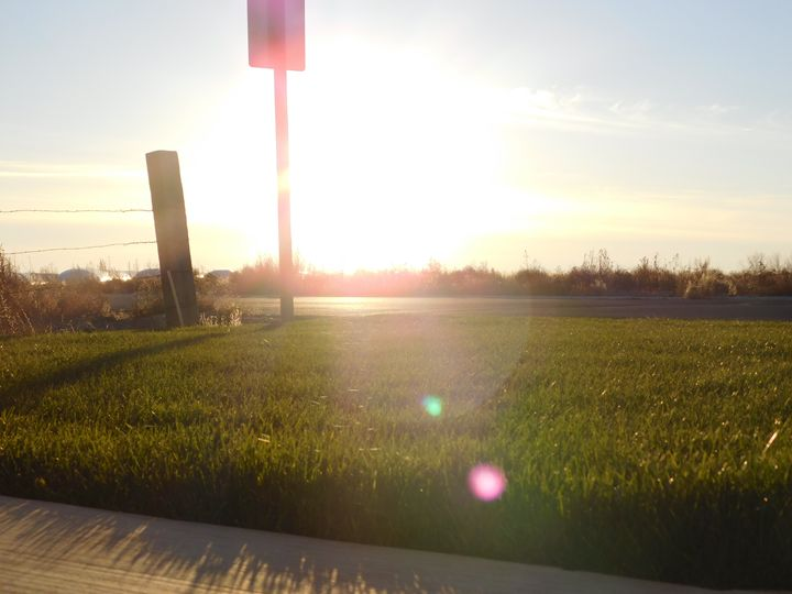 Rising Sun - MagOlivia