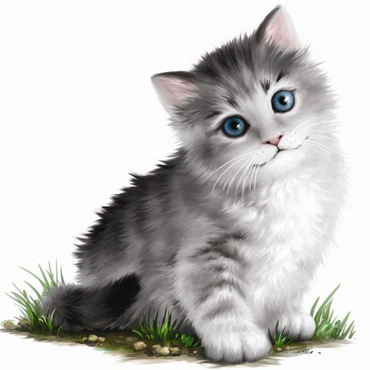 Adorable Kitten - Aviva Gittle Gifts