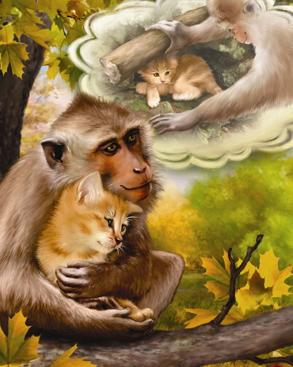 Monkey Adopts a Kitten - Aviva Gittle Gifts