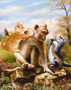 Kittens Play With Monkey