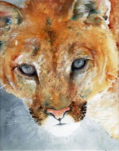 Cougar - Mo's Art Stuff