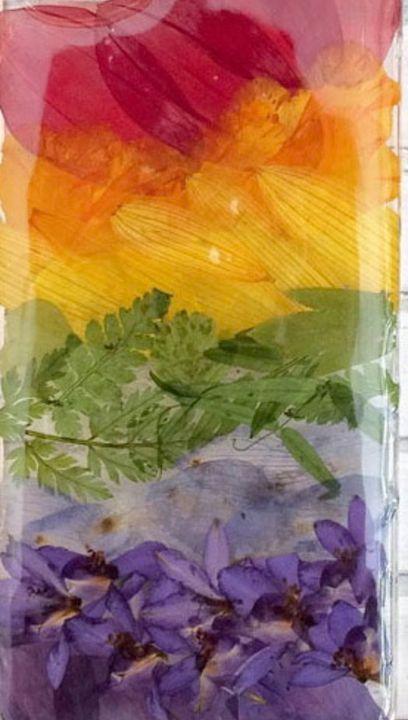 Rainbow - Secret garden