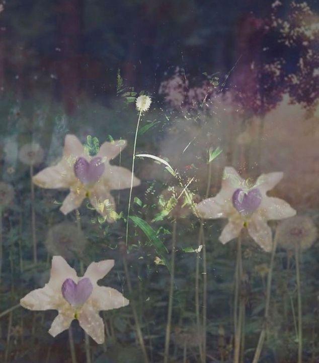 Love - Secret garden