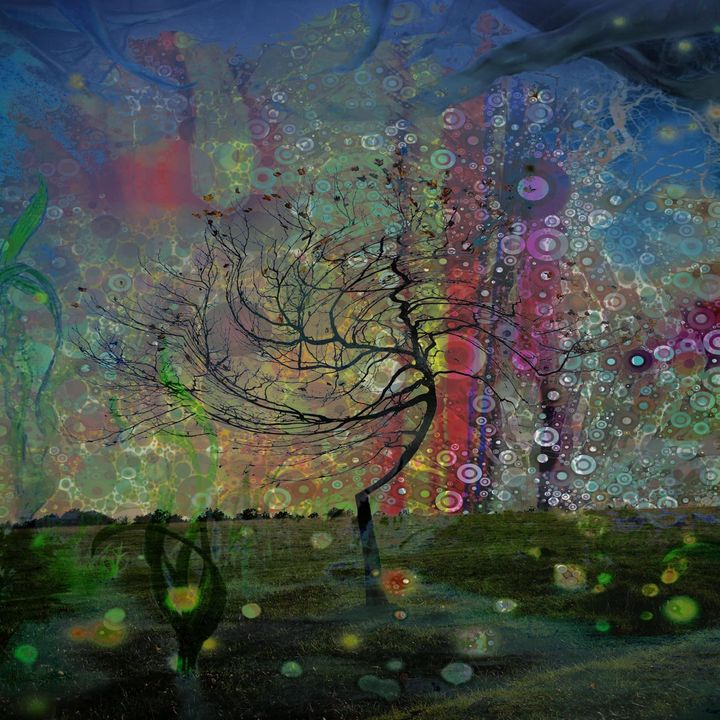 One tree - Secret garden