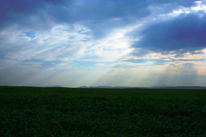 Light through clouds - Hibiscus