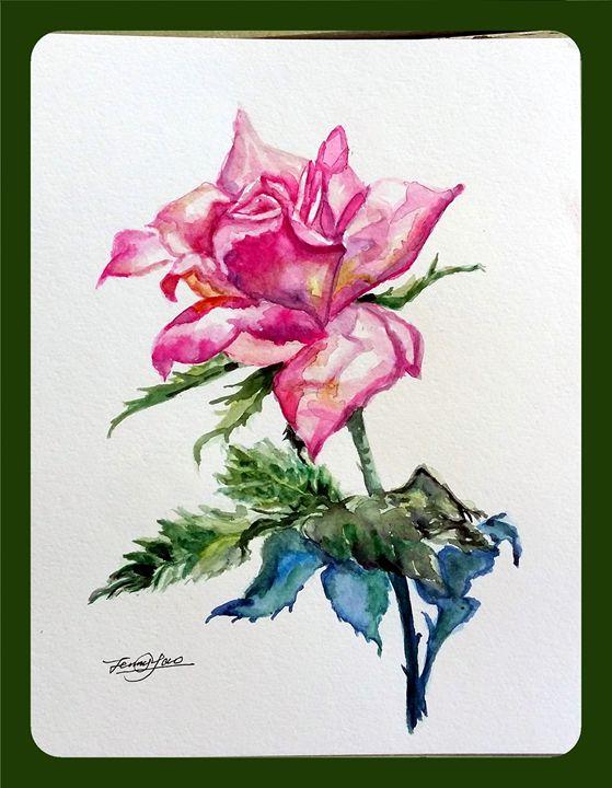 Rose in Pink - ArtbyJennyYao
