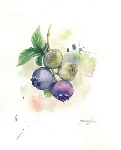 Watercolor painting blue berry