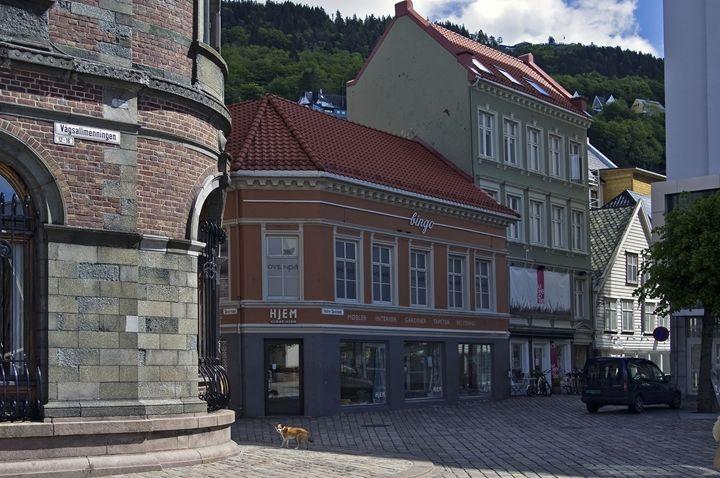 Bergen architecture - Pluffys portfolio