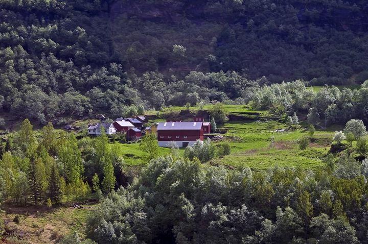 Norwegian countryside - Pluffys portfolio