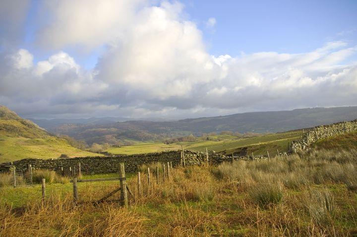 Fences and stone walls - Pluffys portfolio