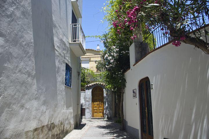 The passageway - Pluffys portfolio
