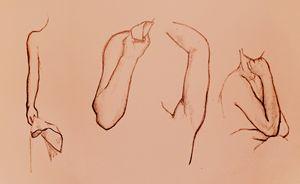 Human Form - Arms
