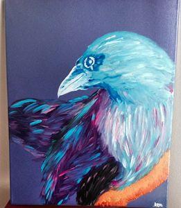 A Nights Raven