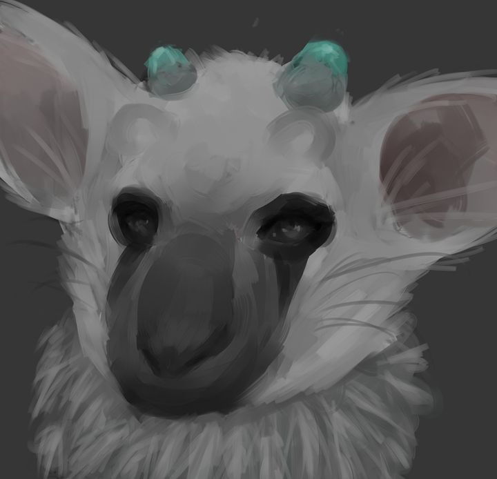 Last Guardian Trico - Cull