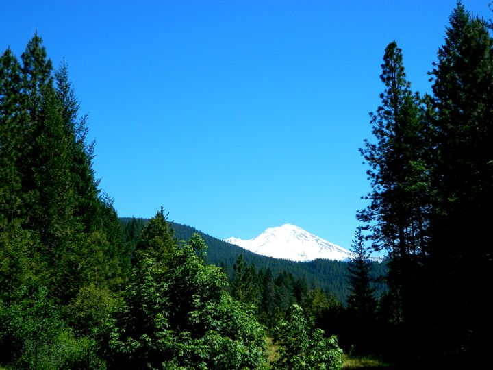 Mt. Shasta - Markell Smith Gallery