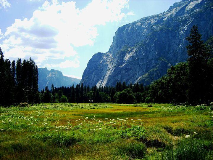 Yosemite Valley - Markell Smith Gallery