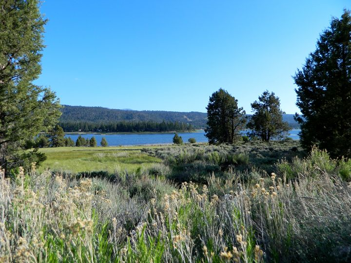 Big Bear Lake - Markell Smith Gallery