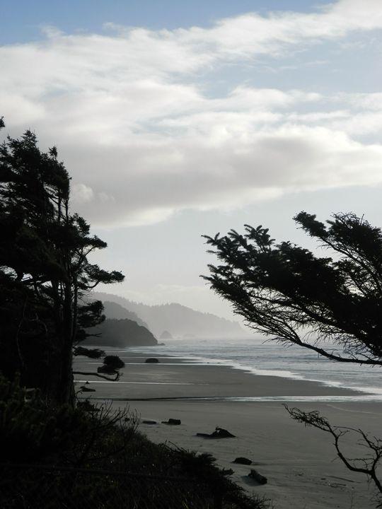 The Oregon Coast - Markell Smith Gallery