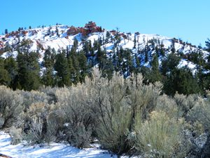 Snow in Red Canyon