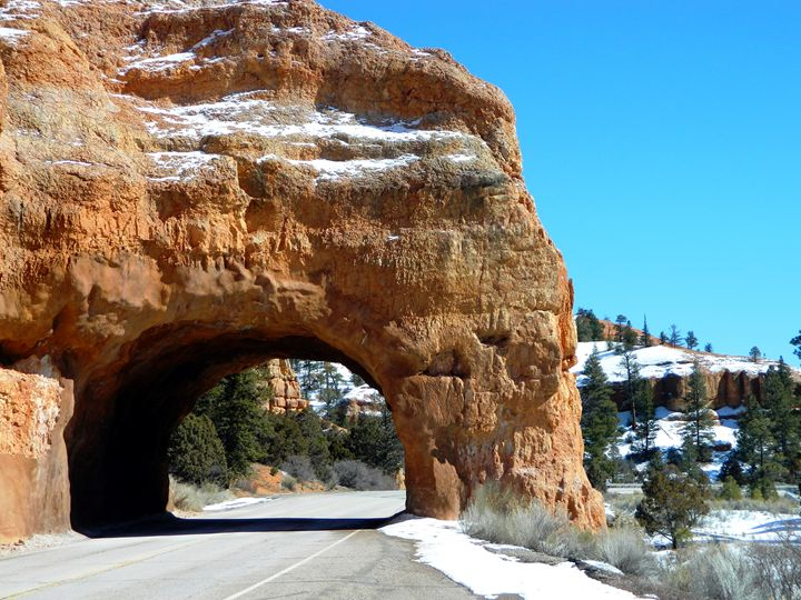 Red Canyon Arch - Markell Smith Gallery