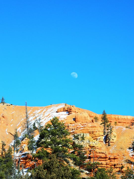 Red Canyon Moon - Markell Smith Gallery