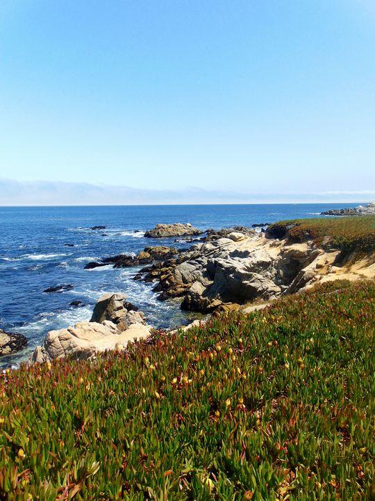 The Monterey Coastline - Markell Smith Gallery