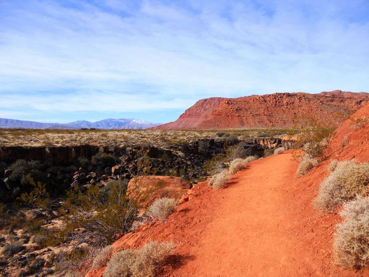 The Snow Canyon Path - Markell Smith Gallery
