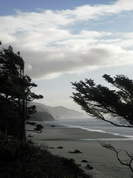 Oregon Coast - Markell Smith Gallery