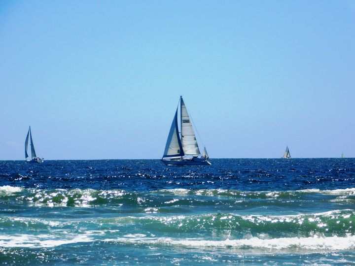 Sailing - Markell Smith Gallery