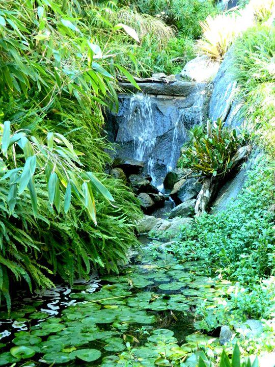 Pond Falls - Markell Smith Gallery