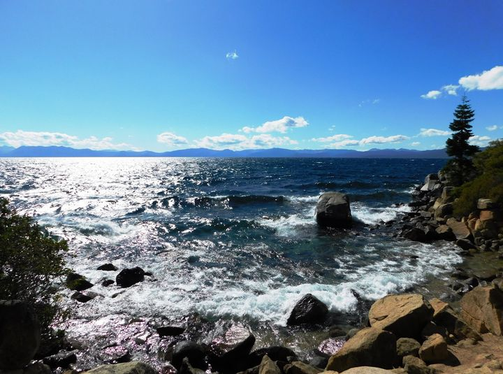 Tahoe Inlet - Markell Smith Gallery