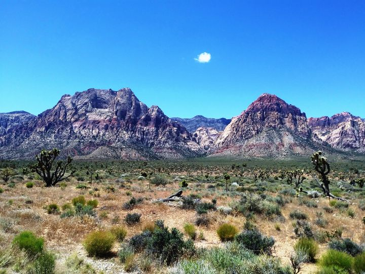 Red Rock Canyon - Markell Smith Gallery